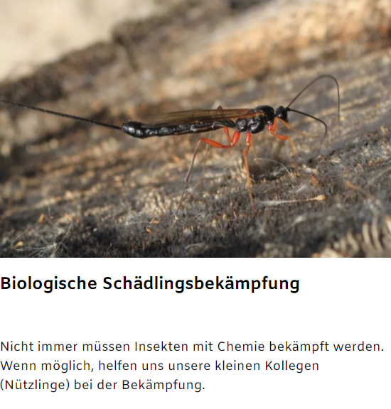 biologische Schädlingsbekämpfung
